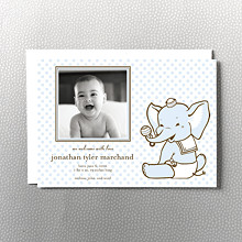 Diapered Elephant: Birth Announcement
