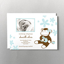 Ukulele Monkey: Birth Announcement