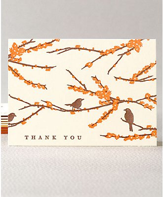 Sparrows - Set of 6