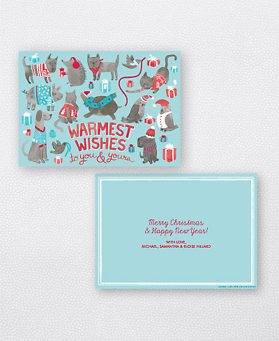 Animal Sweaters Blue Landscape Flat Holiday Card (no photo)