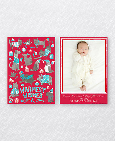Animal Sweaters Red (Portrait) Holiday Photo Card