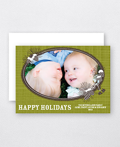 Winter Pinecones Holiday Photo Card