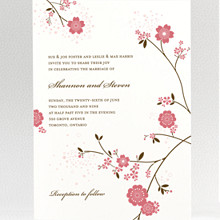 Cherry Blossom: Wedding Invitation