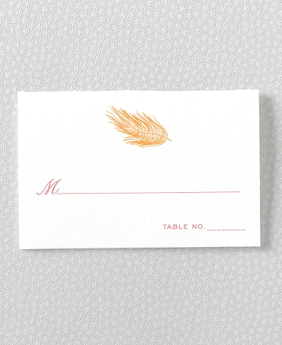 Feathers Place Card
