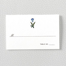 Jaipur: Place Card
