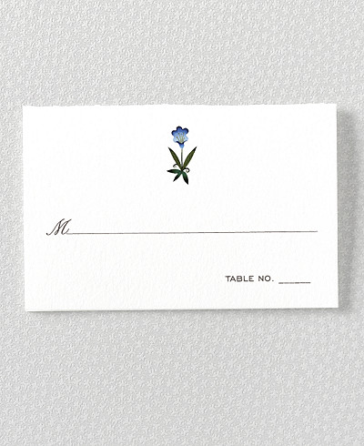 Jaipur Place Card