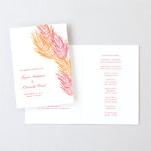 Feathers: Letterpress Folded Program