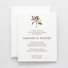 Tropic: Letterpress Rehearsal Dinner Invitation
