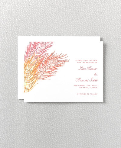 Feathers Letterpress Save the Date Card