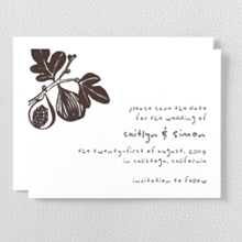 Figs - Letterpress Save the Date