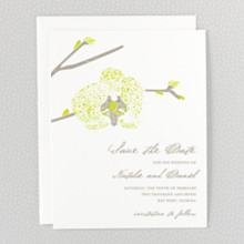 Orchid - Save the Date