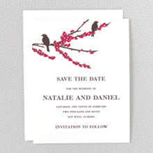 Sparrows---Letterpress Save the Date