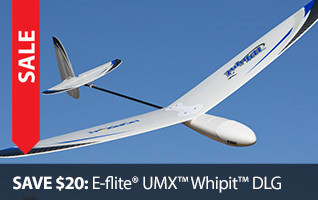 E-flite Whipit Whip It DLG Disc Launch Glider Sailplane