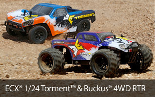 ECX 1/24 Torment and Ruckus