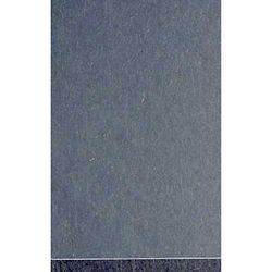 """Evergreen 9005 Styrene Sheet Clear 6 x 12"""" 15.2 x 30.5cm .005"""" .01cm pkg 3 269-9005"""
