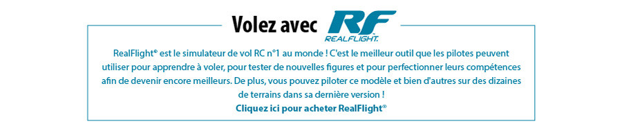 Volez avec RealFlight