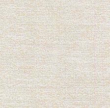Morph Parchment (Exclusive)