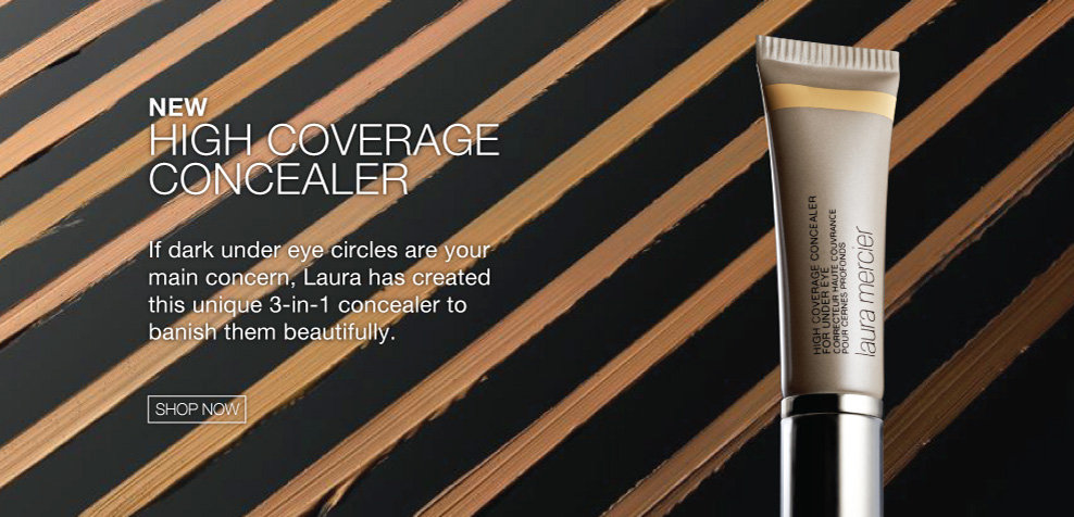 NEW High Coverage Concealer
