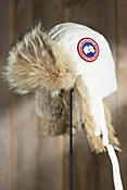 Down-Filled Canada Goose Trapper Hat with Coyote Fur Trim