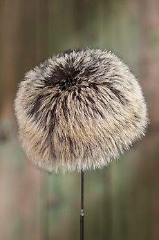 Canadian Cross Fox Fur Cossack Hat