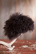 Tibetan Lamb Fur Hat