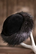 Women's Beaver Fur Hat
