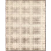 Coolidge - Cream/Gray Rug - 5'3