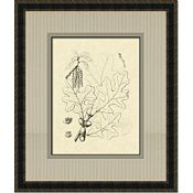 Antique Oak Leaves III