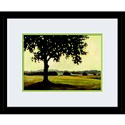 Set of 2 23x19 Lithographs