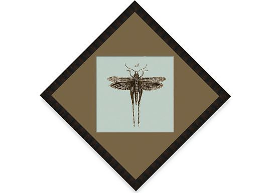 Accessories - Dragonfly #21