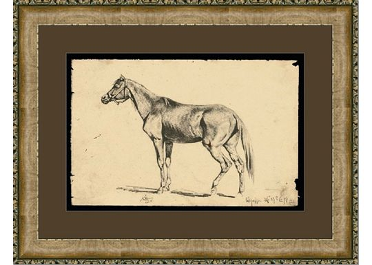 Accessories - Equine Study II