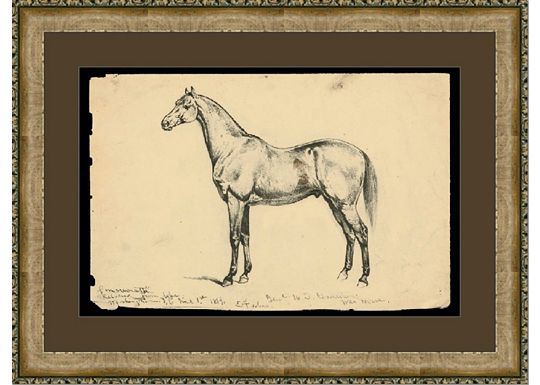Accessories - Equine Study IV