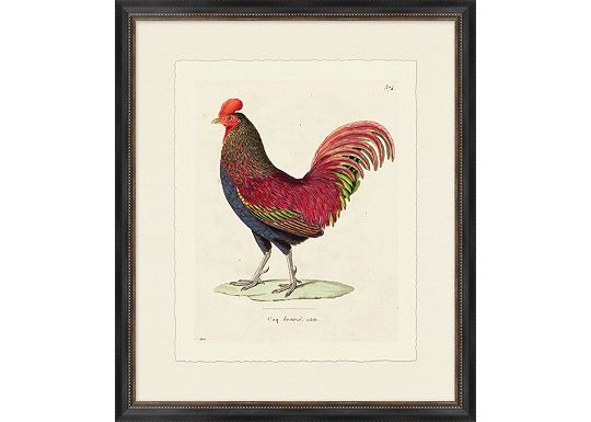 Accessories - Rooster I