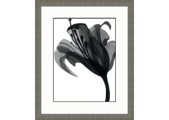 Accessories - Black and White Watercolor Flowers B
