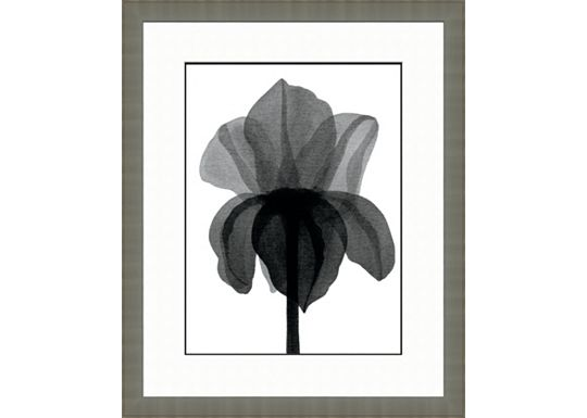Accessories - Black and White Watercolor Flowers D