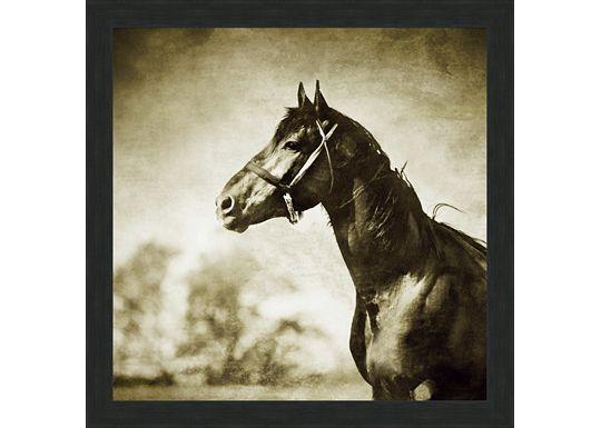 Accessories - Horse