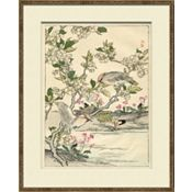 Asian Garden Etchings C