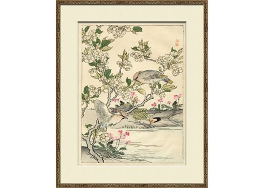 Accessories - Asian Garden Etchings C