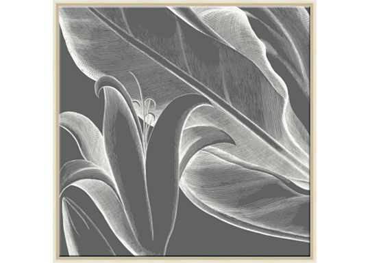 Accessories - Malaberica Flora in Grey A