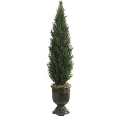 Accessories - Cedar Topiary in Urn