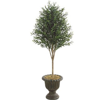 Accessories - Olive Tree in Urn