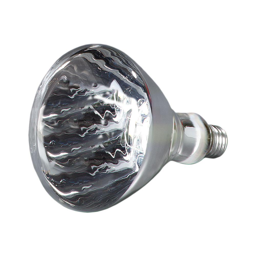 CARLISLE HLRP602 Infra-Red White, 250 Watt Heat Lamp Bulb