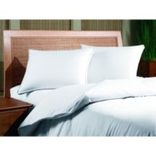 Inn Style 140525 Gray Duck Feather 22 Oz Chamber Pillow