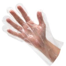 Clear Plastic Disposable Gloves, 100/Pkg