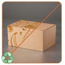 LBP 9608 Kraft Corrugated Lunch Box With Fruit Design - 50 / CS
