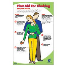 "DayDots 20418-02-21 17"" x 11"" First Aid For Choking Poster"