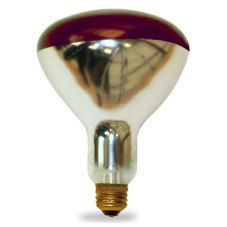 Shat-R-Shield® 01713I Incandescent 250W Red Heat Lamp