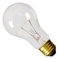 Accuserv L144 Frosted 100W Incandescent Bulb - 8 / PK
