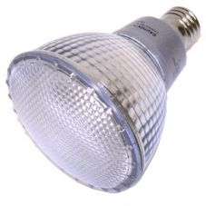 Compact Fluorescent Screw-In Bulb