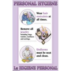"DayMark 112095 17"" x 11"" Personal Hygiene Poster"